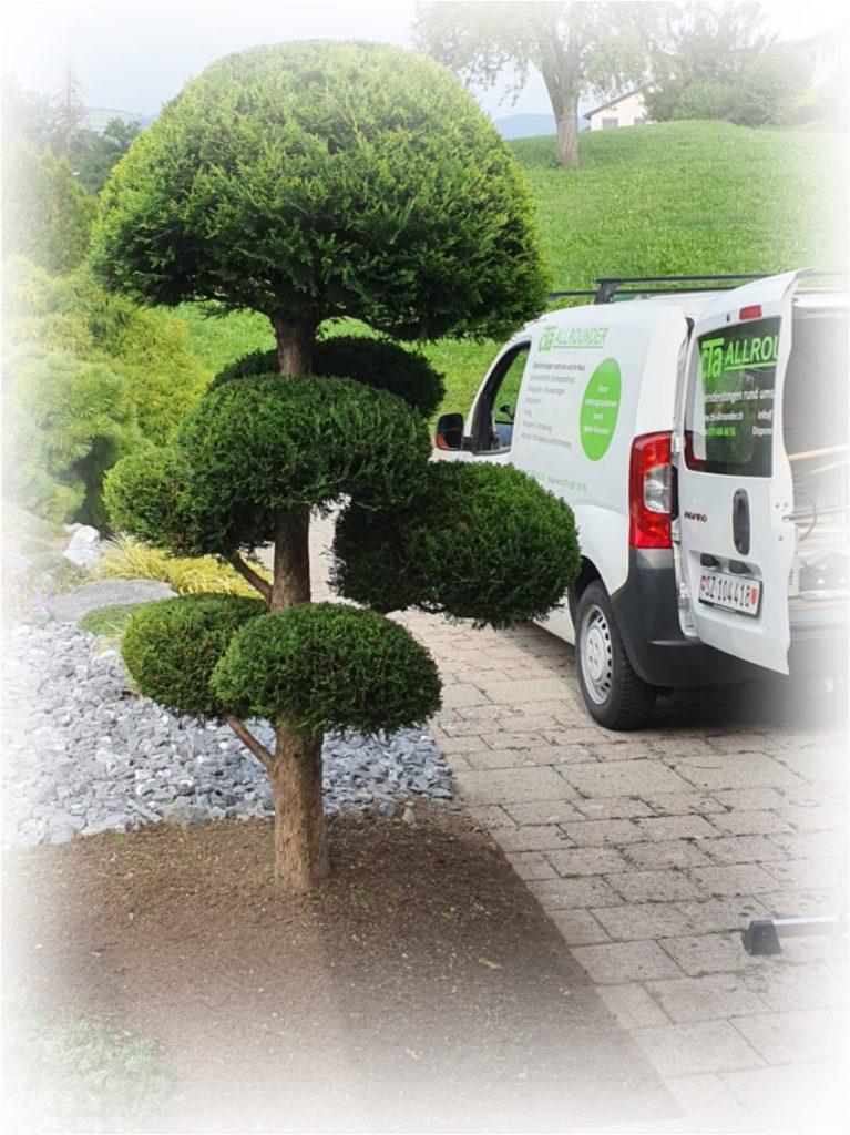 Gartenunterhalt Gartengestaltung